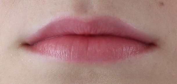 Estee Lauder Pure Color Envy Lip Volumizer Lip Swatch